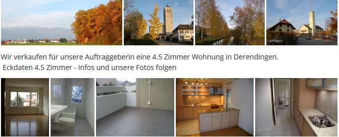 immobilien solothurn099